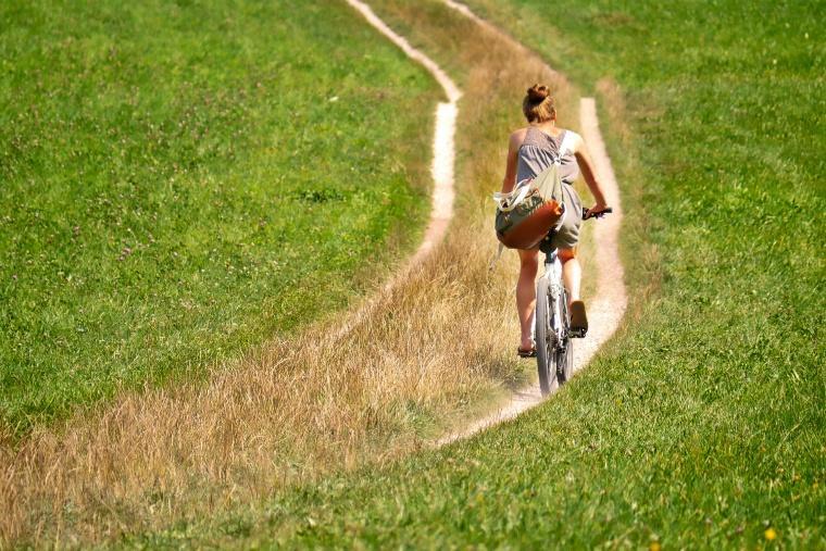 cyclists-2915140_1920.jpg