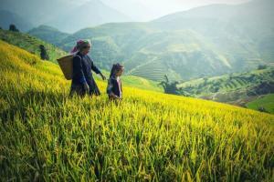 【10月~12月】ベトナム旅行でおすすめの観光エリア